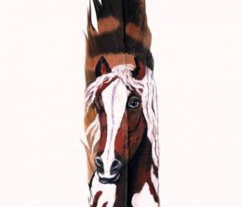 Pferd-braun