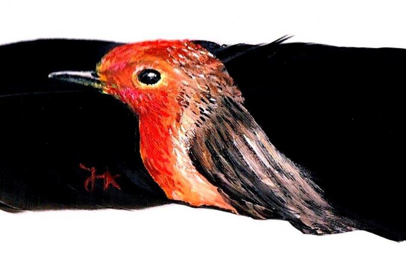 19-Reichtum-Vogel