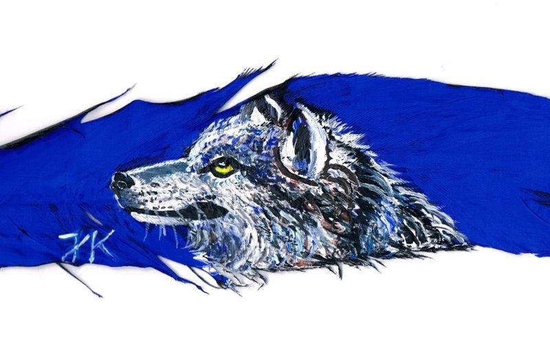 2015-06-21-wolf-001